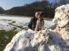 heerlijk een wandeling maken in de sneeuw Joy