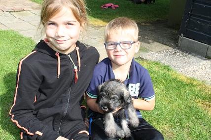 12 september uitzoeken pups Penny Valerio